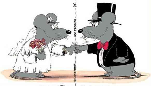 traumhaft heiraten